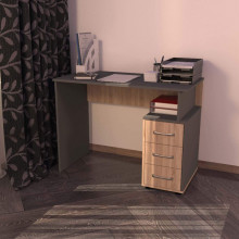 Компьютерный стол «Минивайт 05/1000»
