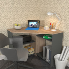 Компьютерный стол «Минивайт 25/900»